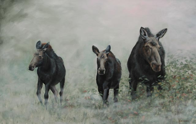 Morning Mist and Moose Family 26 x 40 Oil on Panel