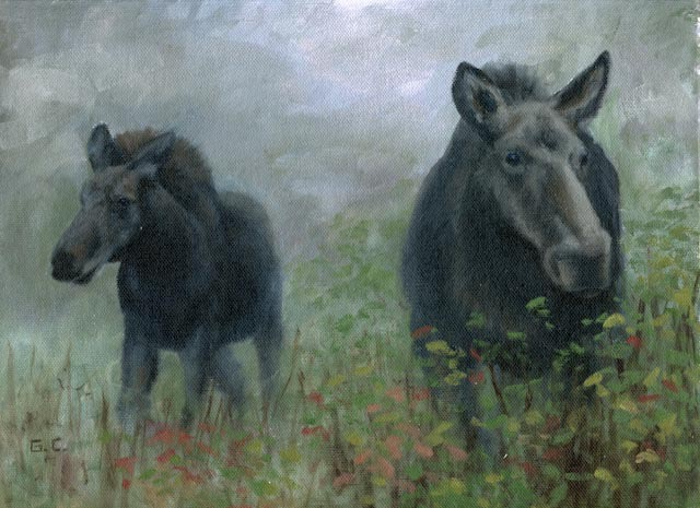Morning Mist and Moose Family 9x12 Oil on Canvas_
